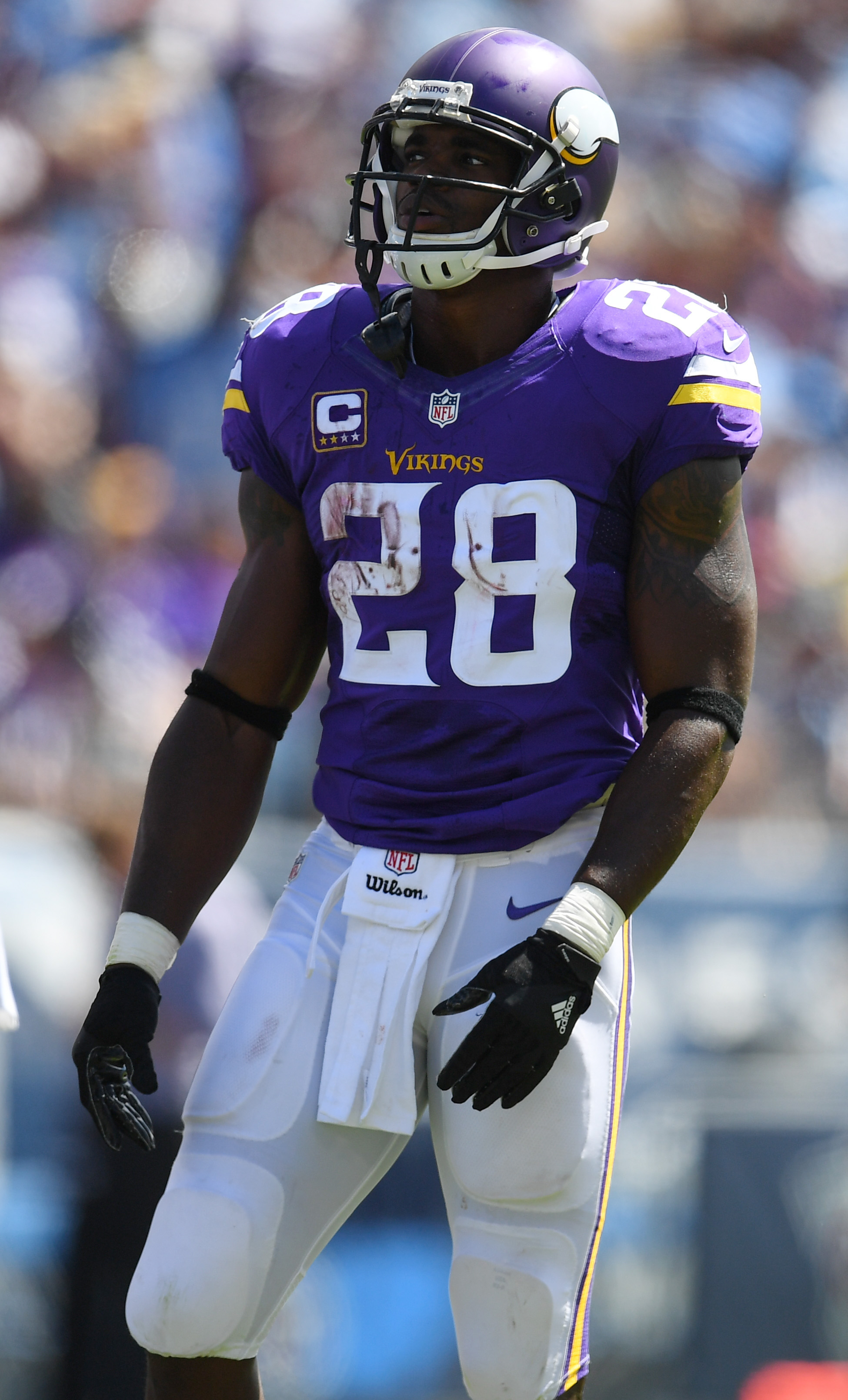 Texans not interested in adrian peterson voltagebd Choice Image